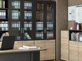 Офисные шкафы (60)